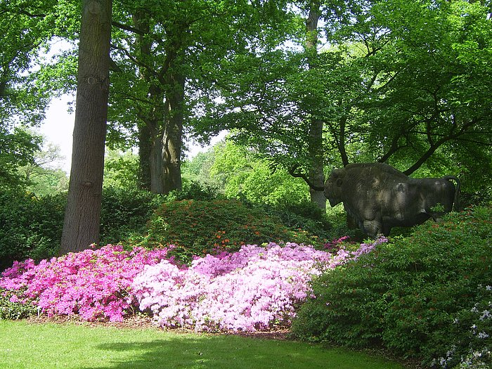 Rhododendronpark a Berlino
