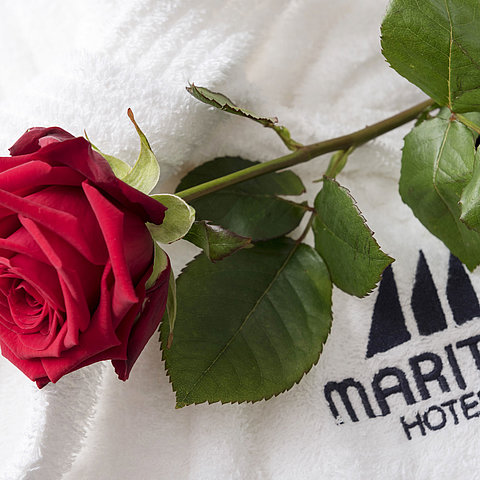 Bathrobe | Maritim Hotel Gelsenkirchen
